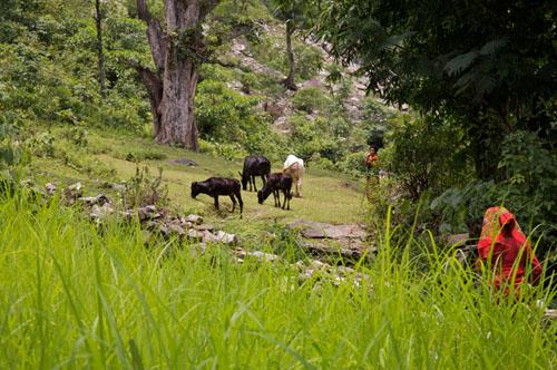 village travel