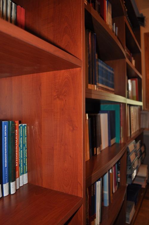 BOOKS IN THE GYLA LIB