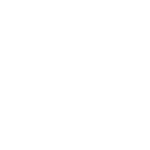 twitter-logo-white-transparent